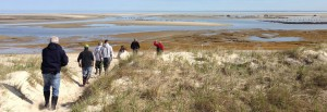 graphics-Seagrant-WHSG_Photo_A